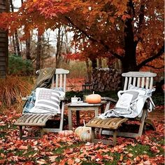 I would love to rest a while here