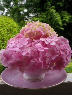 What a sweet look: pink mophead hydrangea paired with a pink teacup and saucer. #pink #hydrangea
