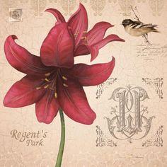 Obraz Dekor z kwiatem - Amarylis - DECORTO.COM