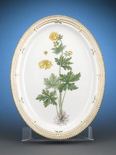 A large, magnificently hand-painted Flora Danica oval platter by Royal Copenhagen. The motif is that of the globe flower, or Trollius europaeus L.,a perennial plant native to Europe and Western Asia.Splendid detail, including gilt-accented rim, and the flower's hand-lettered Latin name on the reverse, distinguish this exceptional serving piece.
