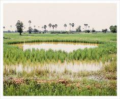 Vandy, Rattana by Season of Cambodia, via Flickr