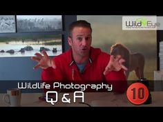 In this series of videos Wild Eye's Gerry van der Walt answers your wildlife photography questions! Wild Eyes, Wildlife Photography, This Or That Questions, Nature Photography