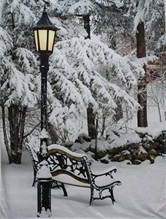 Snow Covered Bench Streetlight Christmas Photography Backdrop no Crease Photo Background Christmas Photography Backdrops, Christmas Backdrops, Snow Photography, Light Up Pictures, Winter Pictures, Christmas Pictures, Winter Szenen, Winter Magic, Christmas Scenes