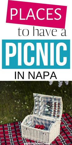 Best Picnic Spots in Napa | Wine Picnic Napa | Wine Country Picnic Spots | Wine Picnics in Napa via @aspiringwinos Picnic Spot, Picnic Area, Country Picnic, Wine Country, The Wine Club, Different Types Of Wine, Picnic Lunches, Wine Education, Cabernet Sauvignon