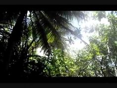 National Student Exchange (NSE) - GUAM FAll '10 - YouTube