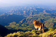 ETHIOPIA- MY #1 DESTINATION