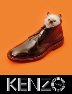 Kenzo shoes with cute cat!