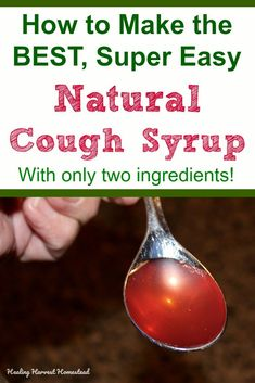 How to Make the BEST Natural Cough Syrup with Honey and Onion, Easy and Throat Soothing Too! — Home Healing Harvest Homestead Natural Home Remedies, Natural Healing, Herbal Remedies, Health Remedies, Holistic Healing, Holistic Remedies, Bad Cough Remedies, Cough Suppressant Home Remedies, Natural Remedies