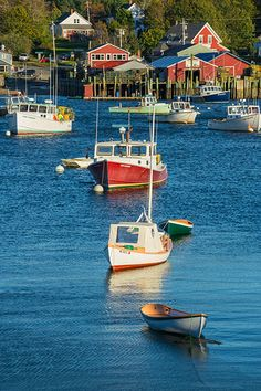 Bass Harbor, Maine | Andy Cook, RMRP And you wonder why I want to move to Maine!