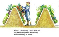 Hugelkultur beds are the right height for no-bend gardening.