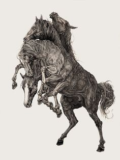 AJ Frena.  Pencil art