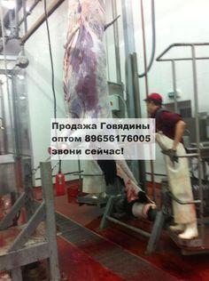 Продажа Говядины оптом! Заключаем долгосрочные договора! http://kamagro.ru/prodazha-govyadiny-optom-ot-proizvoditelya  Продажа говядины оптом от производителя У нас собственный забойный цех.  В продаже говядина охлажденка и заморозка.  В день можем вырабатывать от 17 тонн.  Наши контакты  - WhatsApp : +7 (965) 617-60-05 - Skype : hfbkmm - Viber : +7 (965) 617-60-05