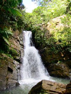El Yunque. Miss my PR...
