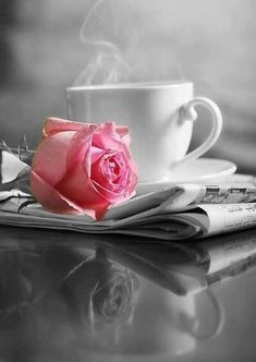 pink rose in in an otherwise black and white picture; coffee love