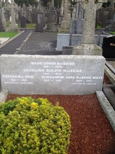 See 113 photos from 277 visitors to Glasnevin / Glas Naíon. Sidewalk, Language, Bride, Glass, Bridal, Wedding Bride, Walkways, Languages, The Bride