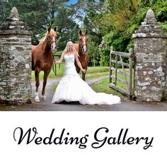 Weddings, anniversaries, birthdays and parties at Ash Tree Farm where you find wonderful surroundings with flowers, ponds and nature.