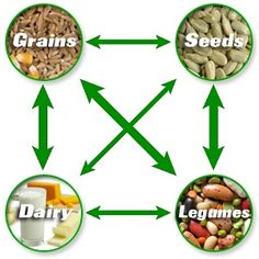 protein-complimentary  Various combinations of  Grains, Seeds, Legumes and Dairy to form a complete Proteins.  I sprinkle a little pea protein or pumpkin seed and flax on my oatmeal in the morning.