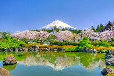 Spring Temple and Mount Fuji by arai3776 - Photo 114682289 - 500px