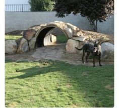 Goat Play area