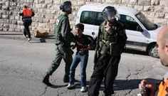 IOF arrest two children in Jerusalem, 11 in West Bank – PNN