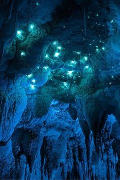 The Waitomo Glowworm Caves are a must see on any trip to New Zealand.