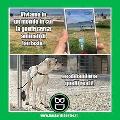 Senza parole. #bastardidentro #cani #abbandono #ipnoticamentebastardidentro www.bastardidentro.it