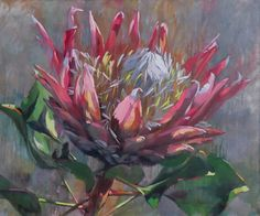 The beautifully painted image of South AFrica's national flower, The Protea painted by local artist Shaune Rogatschnig Protea Art, Protea Flower, Flowers, South African Art, Arte Floral, Ink Drawings, Whimsical Art, Anime Comics, Botanical Art