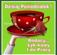 Cotton Candy, Humor, Good Morning Funny, Funny Stuff, Cheer, Ha Ha, Funny Humor, Lifting Humor, Humour
