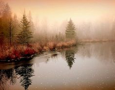 Foggy morning (Saint-Hippolyte, Quebec) by Gisele Bedard on Redbubble