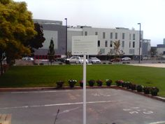 The newly grassed and landscaped CTV site, where people lost their lives in the 22 February 2011 earthquake.