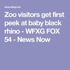 Zoo visitors get first peek at baby black rhino - WFXG FOX 54 - News Now