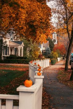 The best spots for leaf peeping in New England