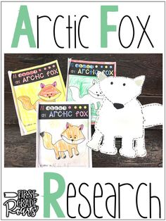 Arctic Fox Informational Text Reading, Writing, & Research Guided Reading Activities, Snow Activities, Animal Activities, Arctic Hare, Arctic Animals, 1st Grade Science, First Grade Activities, Writing Lessons, Science Lessons