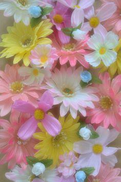 ~~ pastel flowers ~~