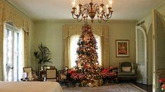 50 Beautiful Christmas Tree Decorating Ideas
