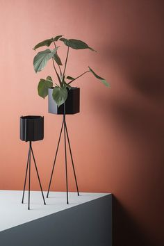 ferm LIVING Plant Stand Grey is part of Scandinavian Home Accessories Plants Purchase the latest range of Ferm Livings contemporary and minimalist plant stands in grey These plant stands are made o - Ferm Living Plant Stand, Marsala, Modern Plant Stand, Plant Stands, Black Plant Stand, Modern Planters, Scandinavian Home, Home Accessories, Sweet Home