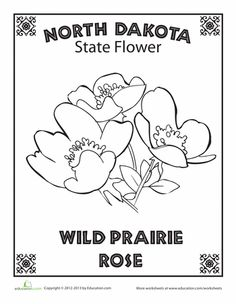North Dakota State Quarter Coloring Page USA State Quarters