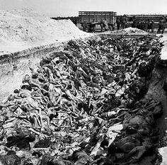 bergen-belsen-ii.jpg El Holocausto somos Nosotros y nuestras acciones Destructivas.