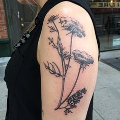 Queen Anne's lace tattoo by rachel hauer actually brings me to tears.