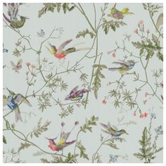 A romantic floral print, Hummingbirds depicts delicate birds perched on foliage and flowers. Originally a handmade block print wallpaper dating back to the century from the Cole and Son archiv Wallpaper Samples, Wallpaper Roll, Wallpaper Direct, Print Wallpaper, Washable Wallpaper, Accent Wallpaper, Painting Wallpaper, Wallpaper Ideas, Hummingbird Wallpaper