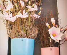 Pastel, Spring, Plants, Cake, Plant, Crayon Art, Planets, Melting Crayons