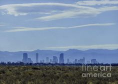 A view of Denver, Colorado silhouetted against the Rocky Mountains. Photographed from the Rocky Mountain Arsenal Wildlife Refuge by Commerce City, Colorado.  The Rocky Mountain Arsenal National Wildlife Refuge is a United States National Wildlife Refuge located adjacent to Commerce City, Colorado, approximately 8 miles northeast of downtown Denver.