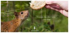 """""""Consume less; share better."""" - Hervé Kempf"""