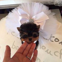 So cute! #love