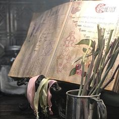 Book of Shadows Printable pages of Herbs Witchcraft Herbal Healing Books, Healing Spells, Magic Spells, Antique Background, Virgo, Witchcraft Books, Divination Cards, Magick, Wiccan