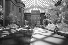 mark alan andre uses infrared to radically alter familiar DC sights Infrared Photography, Photography Series, Alters, Washington Dc, Street View