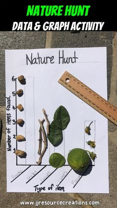 PIN Graph activity that allows students to explore outside integrates science and math all in one. Graphing Activities, Kindergarten Activities, Teaching Math, Teaching Ideas, Preschool, Forest School Activities, Nature Activities, Outdoor Education, Outdoor Learning