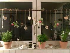 Fensterdeko Küche mit Mooskugeln, Holzvögel, Tulpen in Mini-Einmachgläsern und was die Küche so her gibt...