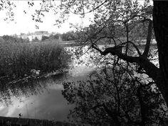 #blackandwhitephotography: Töölönlahdella kuvausreissulla Rocky Horror, Black And White Photography, River, Artwork, Outdoor, Black White Photography, Outdoors, Work Of Art, Auguste Rodin Artwork
