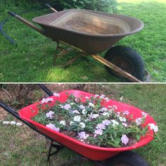 My wheelbarrow planter project is now complete! #gardening #garden #DIY #home #flowers #roses #nature #landscaping #horticulture